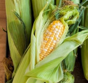 Corns In Commercial microwave